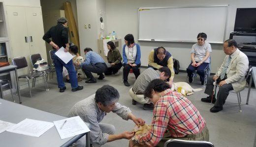 VET'S-えひめ「第6回補助犬健康管理講習会」開催のご報告